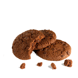 Enjoy Life Crunchy Double Chocloate Cookies