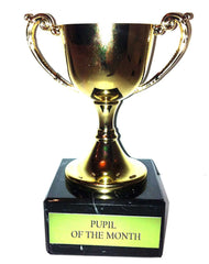 """Pupil of The Month"" Engraved Trophy Award: Small Gold Cast Metal Cup Trophy on Speckled Grey Marble Base (4"" / 10cm)"