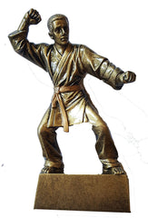Martial Arts Figure Trophy in Bronze Resin