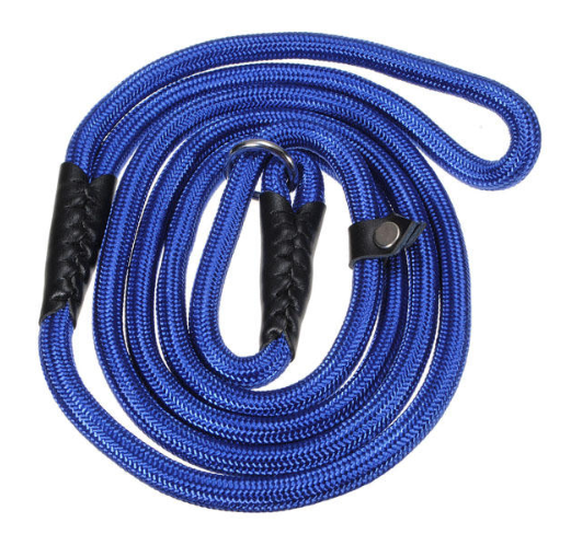 Best Slip Collar Leash