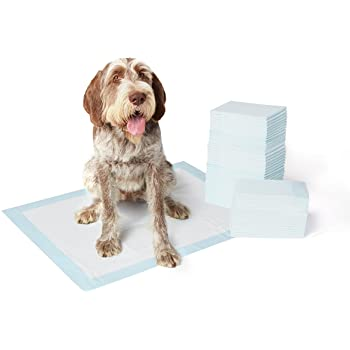 housebreaking pee pads 22x36