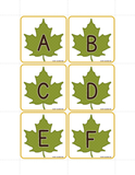 Fall Leaves Alphabet & Beginning Sound Activty
