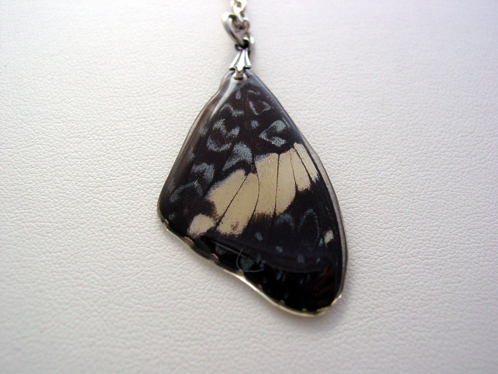 Real Butterfly Wing Necklace Blue White Peruvian Forewing
