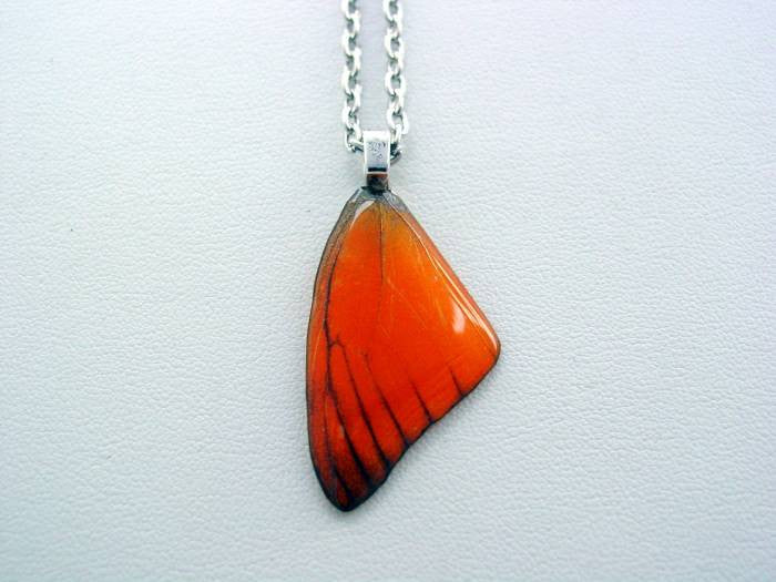 Real Butterfly Wing Necklace Appias Nero Orange Forewing