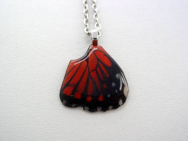 Real Butterfly Wing Necklace Blue White Peruvian Hindwing