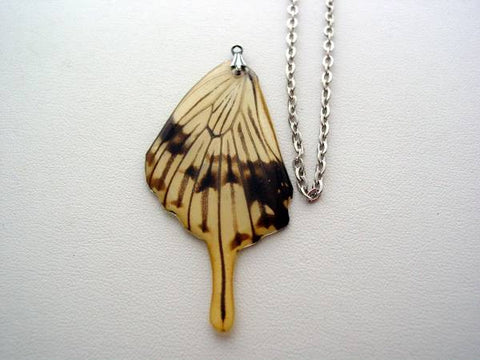 African Butterfly Swallowtail Real Butterfly Wing Papilio Dardanus Butterfly Jewelry Necklace #2