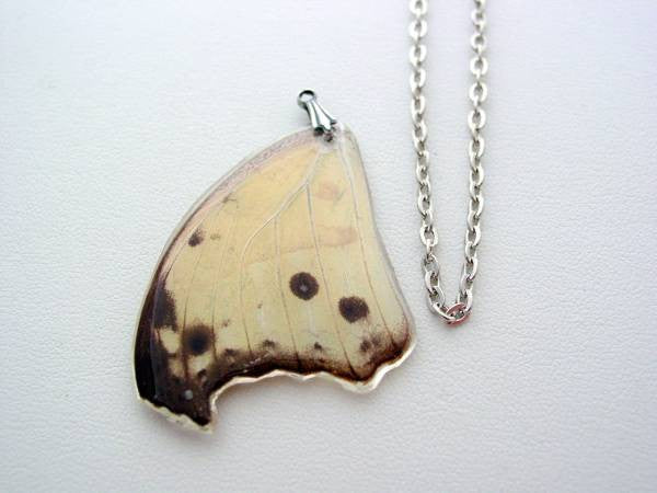 Butterfly Wing Necklace Mother of Pearl Real Butterfly Wing Necklace Nature Necklace (6)