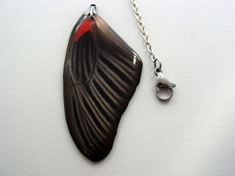 Butterfly Necklace Red Papilio Rumanzovia Reversible Real Butterfly Wing Nature Jewelry
