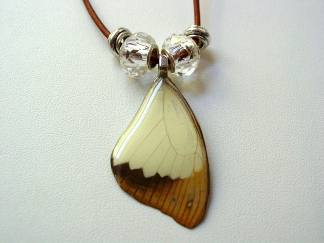 Real Butterfly Wing Necklace African Swallowtail Papilio Nature Jewelry (F9)