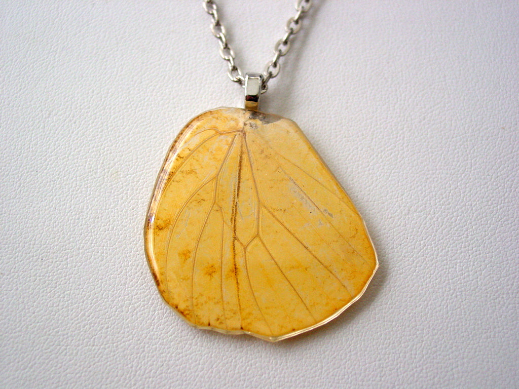 Hebomoia Glaucippe Real Butterfly Wing Hind-wing Necklace C