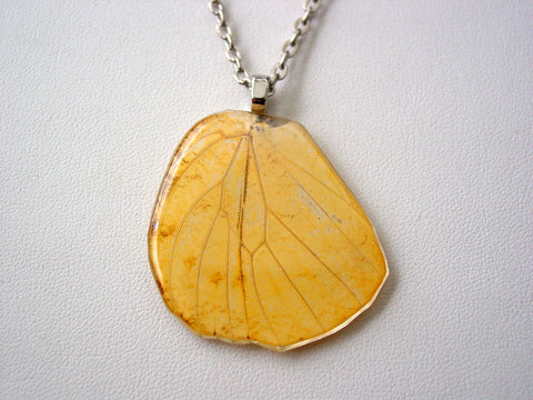 Butterfly Wing Necklace Hebomoia Glaucippe Real Butterfly Hind-wing Necklace Nature Jewelry (C)