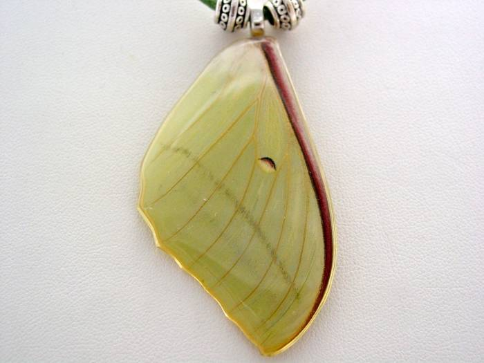 Real Lunar Moth Wing Necklace Luna Moth Lunar Moth Real Forewing Green Suede Leather Necklace Nature Pendant LM14