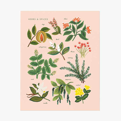 Affiche Herbs & Spices - Rifle Paper Co