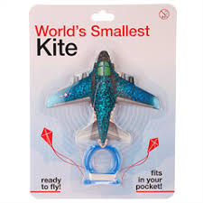 Kite Worlds Smallest Plane