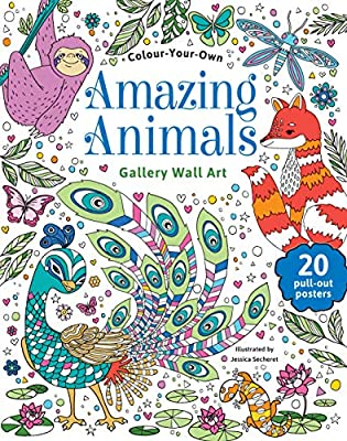 Amazing Animals Colour Your Own Gallery Wall Art by Jessica Secheret Softcover Book