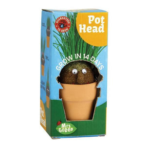 Pot Head Plant Mrs Green Grows in 14 Days Science Kit