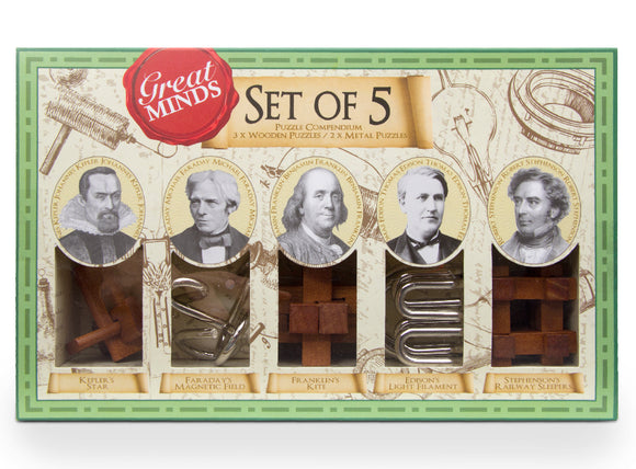 Great Minds Set of 5 Metal & Wood Puzzles Brainteaser Game