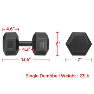 Set of 2 x 10kg/22lb Dumbbells