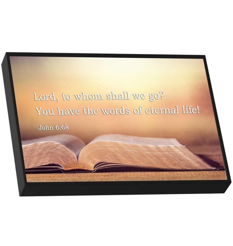 John 6:68 - Lord, to whom shall we go? You have the words of eternal life. Picture frame