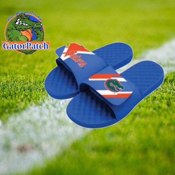 Orange and Blue Striped Slides