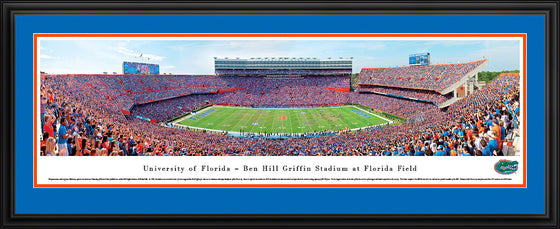 Deluxe Panoramic FL Swamp Stadium