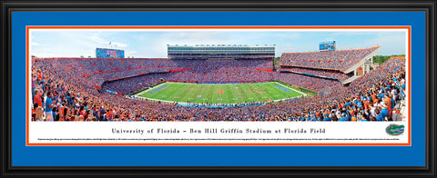 Deluxe Panoramic FL Stadium