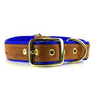 Leather-Nylon Gators Embroidered Dog Collar