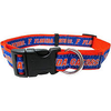 FLORIDA GATORS DOG COLLAR