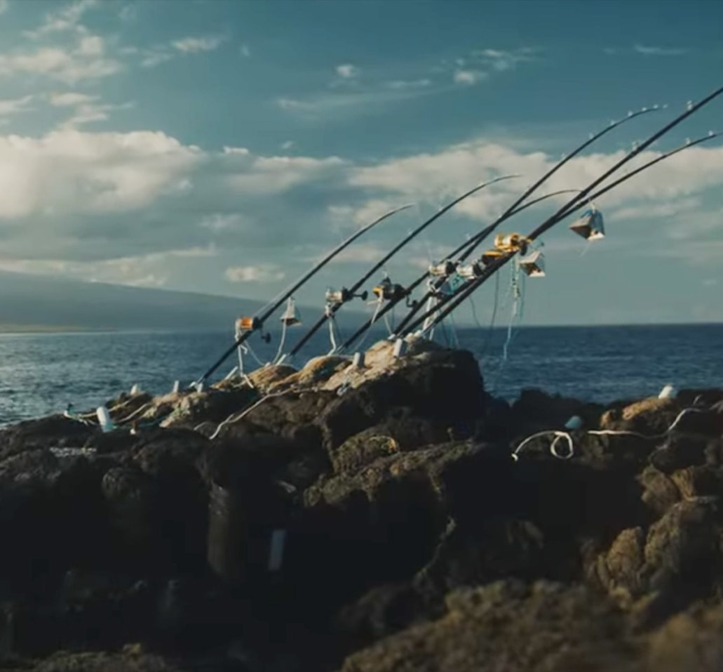 Fishing rods lined up on rock