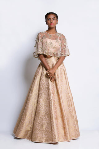 Mirabella Embellished Lehenga - Ready To Ship