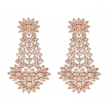 Fariya Drop Earrings in Champagne - Ready To Ship
