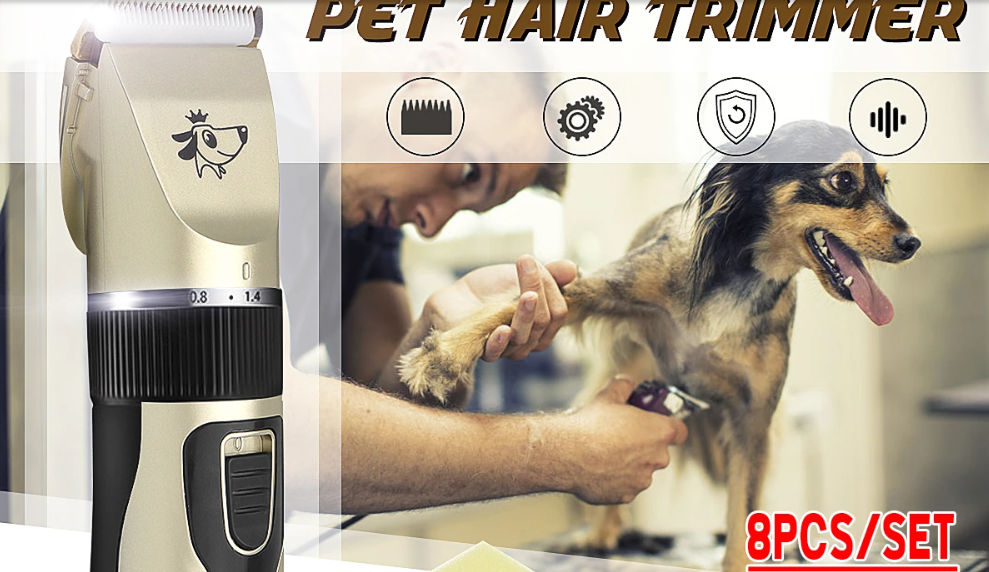 quiet dog clippers,  professional dog nail clippers,  professional dog grooming kit,  professional dog grooming clippers,  professional dog clippers,  professional animal hair trimmer,  grooming clippers,  electric dog nail trimmer,  dog trimmers,  dog shears,  dog shaver,  dog hair trimmer,  dog hair clippers,  dog grooming kit,  dog grooming clippers,  dog clippers,  dog clipper blades,  canine clippers,  best dog hair clippers