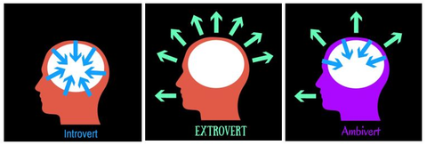 Introvert Extrovert and Ambivert