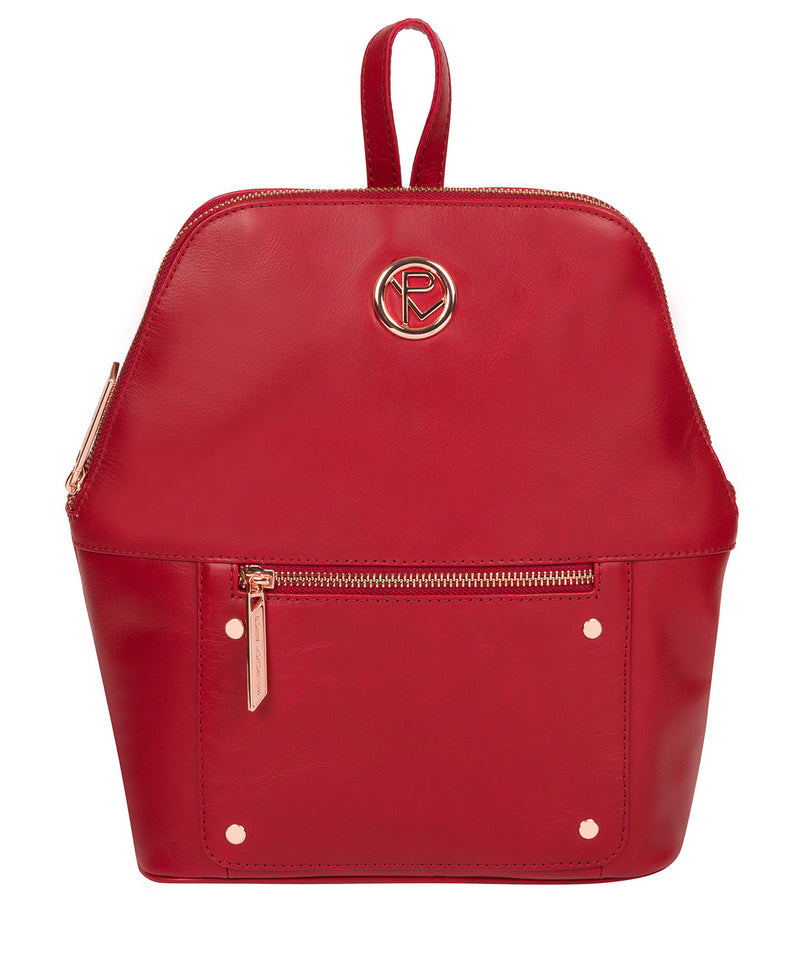 'Rubens' Cherry Leather Backpack image 1