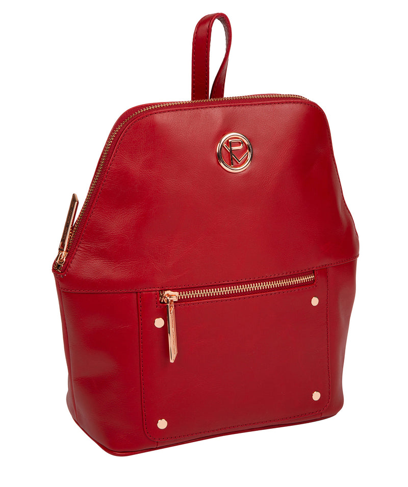 'Rubens' Cherry Leather Backpack image 5