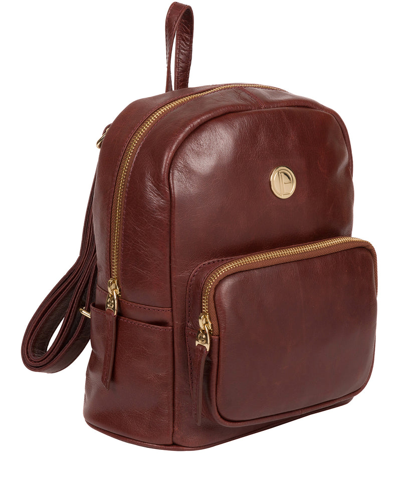 'Cora' Chestnut Leather Backpack image 5