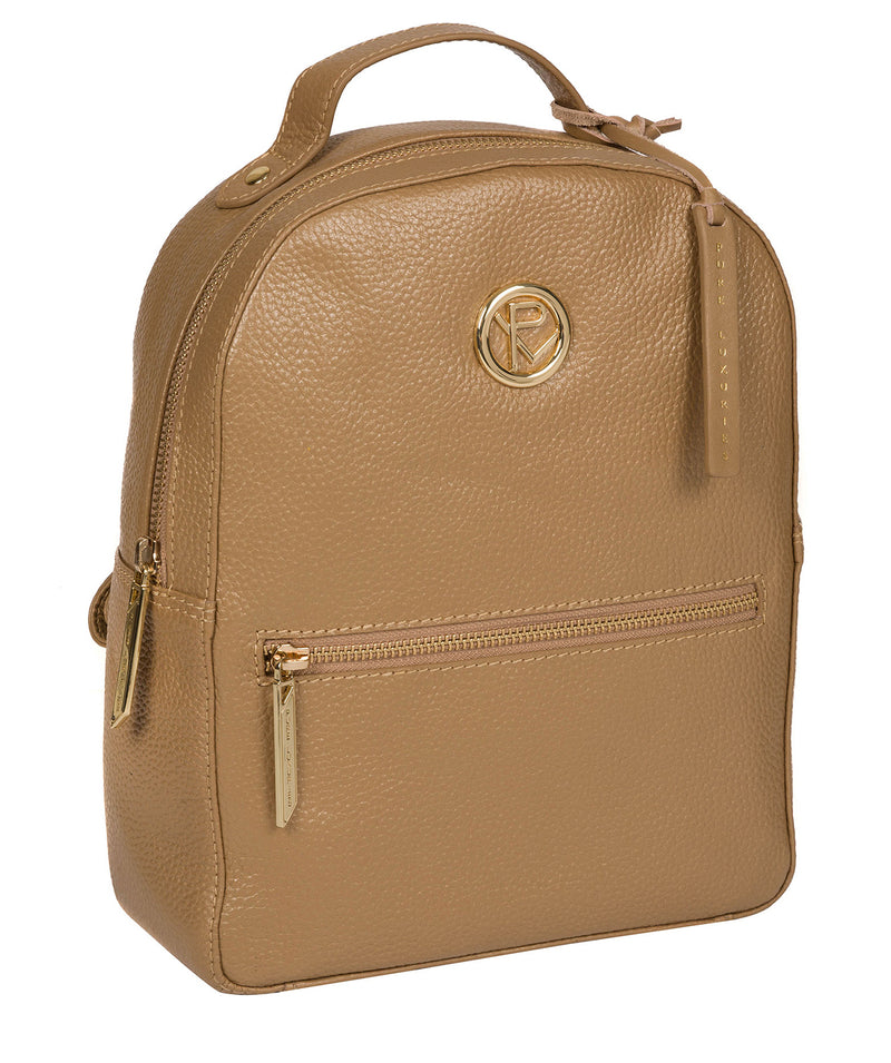 'Zuria' Metallic Champagne Leather Backpack image 5