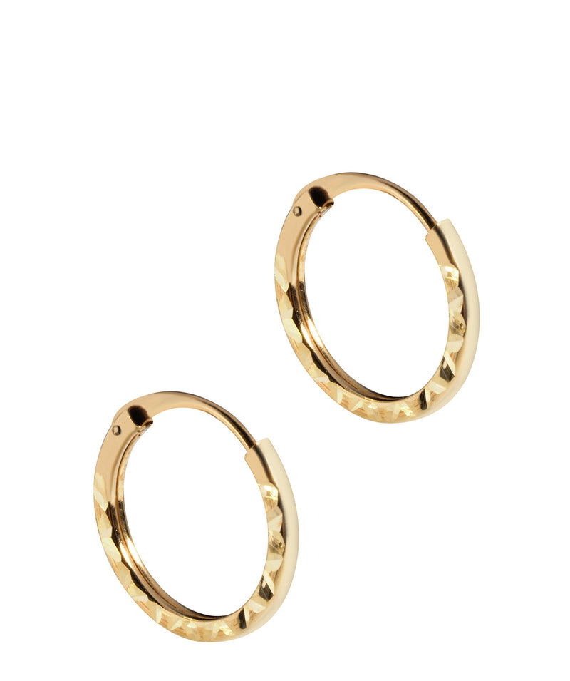 'Tiana' 9ct Yellow Gold Hinged Hoop Earrings image 1