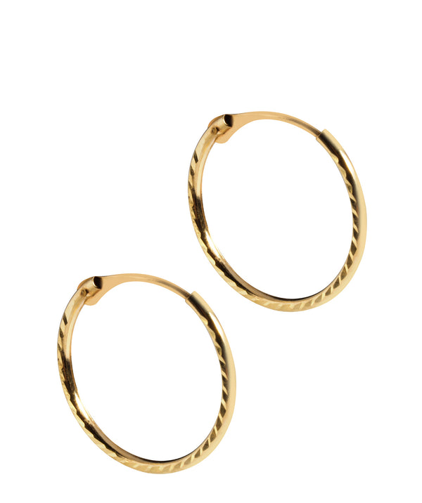 'Samara' 9ct Yellow Gold Hinged Hoop Earrings  image 1