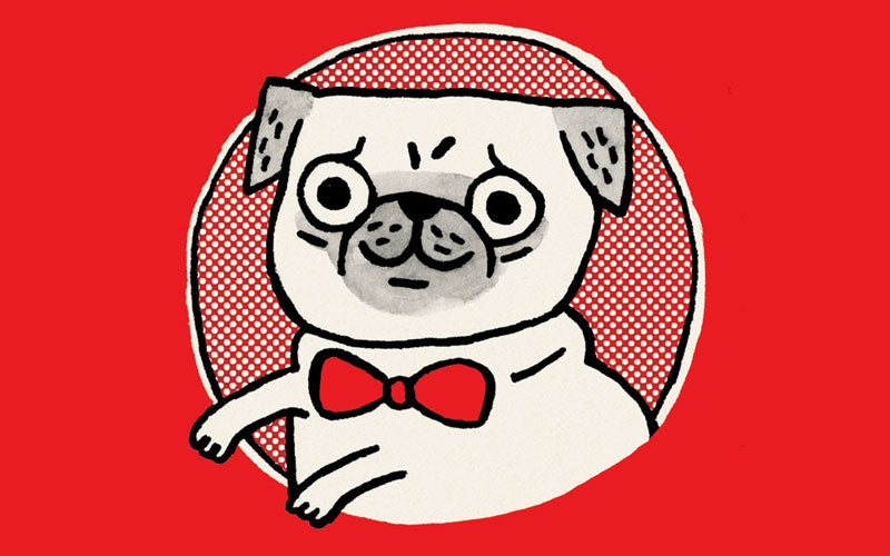 gemma correll solo exhibition at magic pony mr pickles