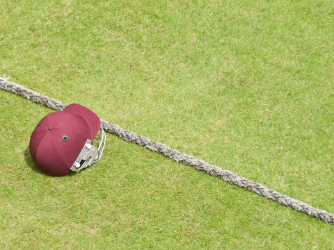 WHY CRICKETERS NEED HELMETS
