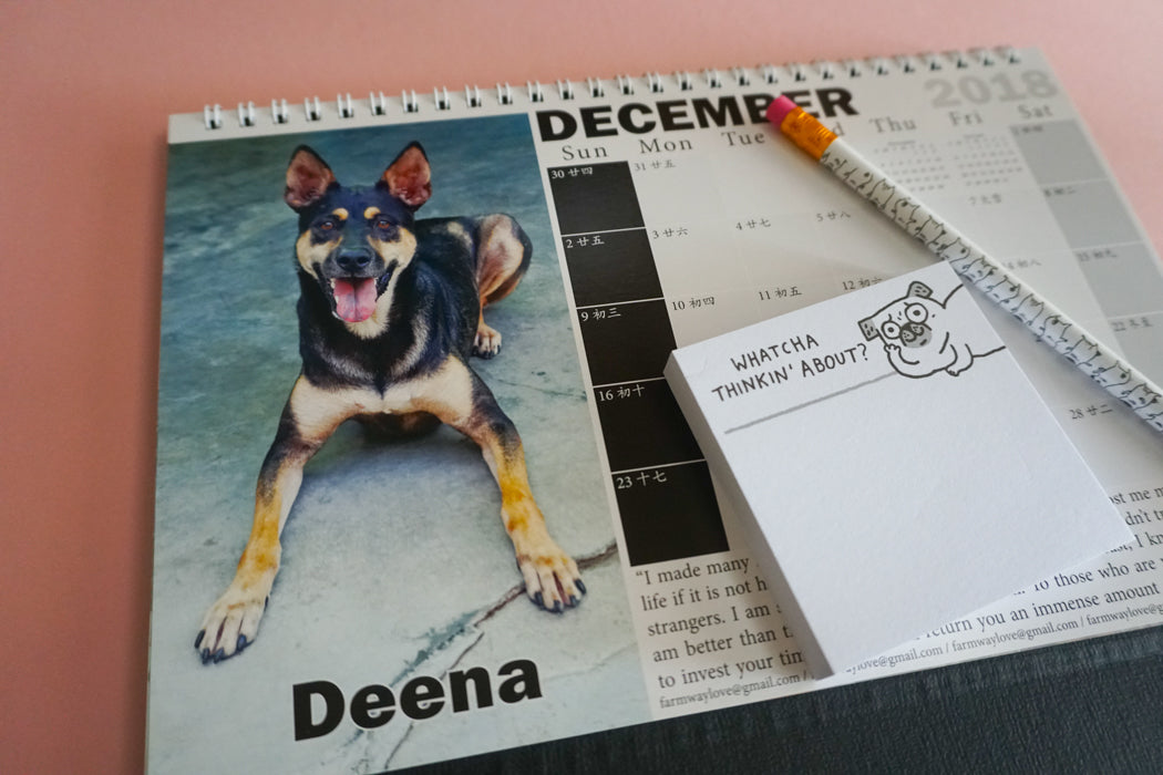 2018 Calendar by Gentle Paw Animal Shelter december