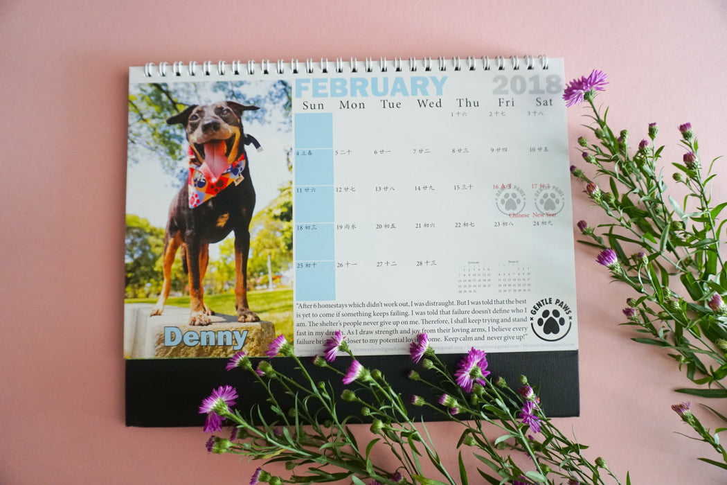 2018 Calendar by Gentle Paw Animal Shelter february
