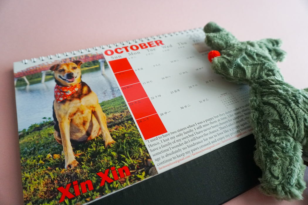 2018 Calendar by Gentle Paw Animal Shelter october