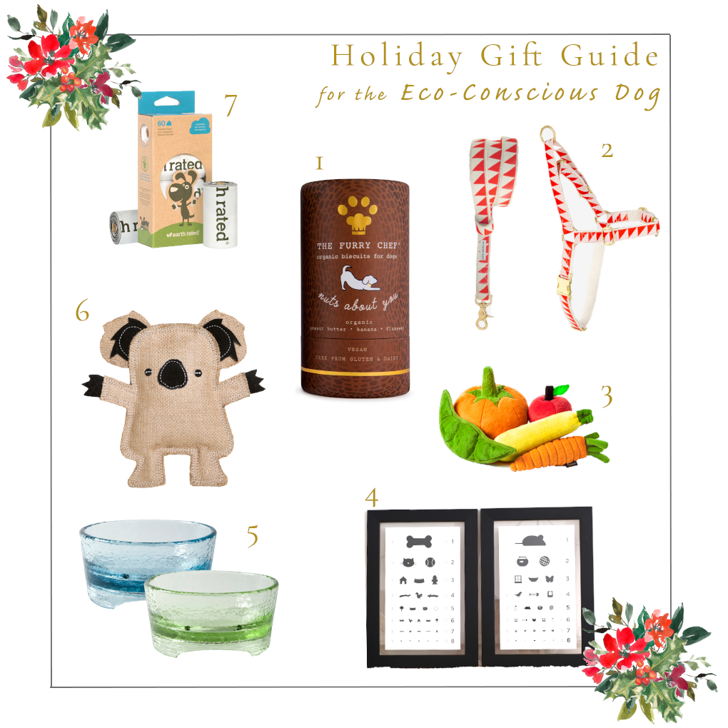 Holiday Gift Guide for the Eco-Conscious Dog