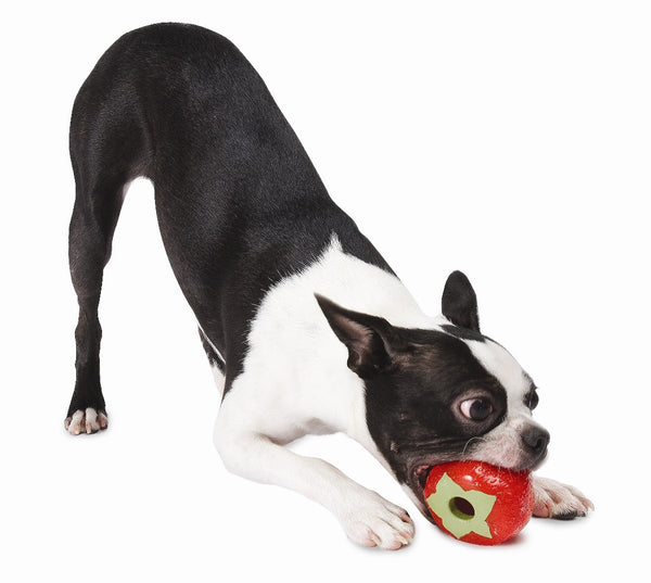 Dog Toy: Produce