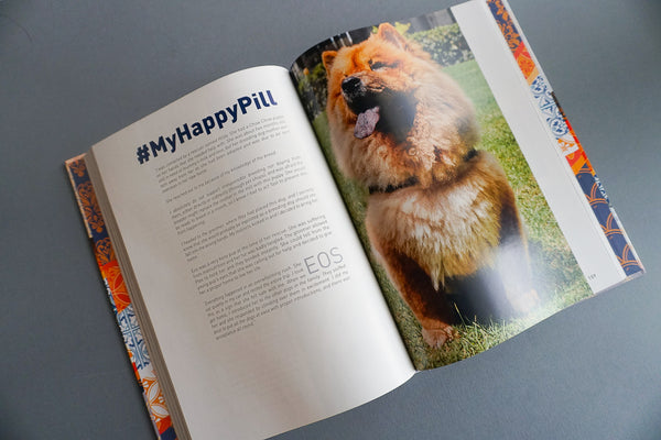 Book: We Adopted! (All Proceeds go to Dog Shelter)