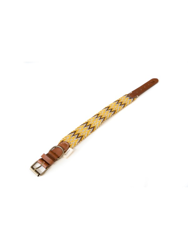Dog Collar: Peruvian Gold