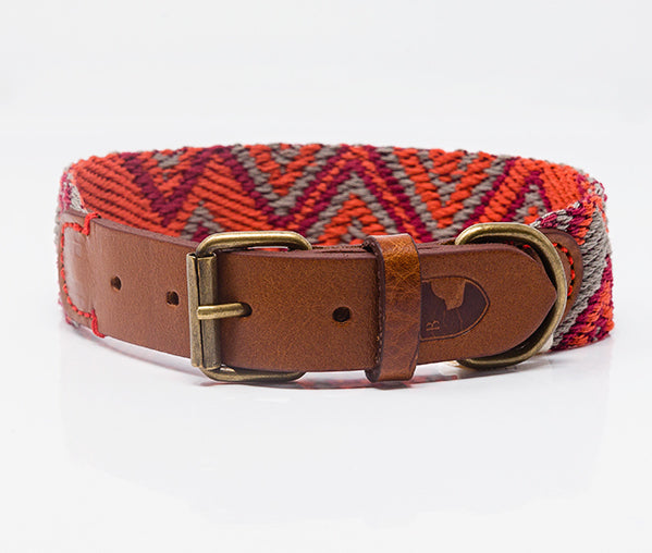 Dog Collar: Peruvian Pikes