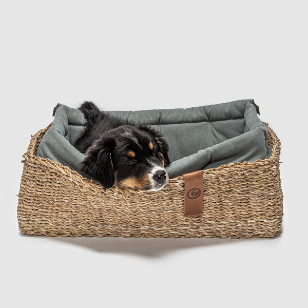 Hideaway Basket Dog Bed, Jade